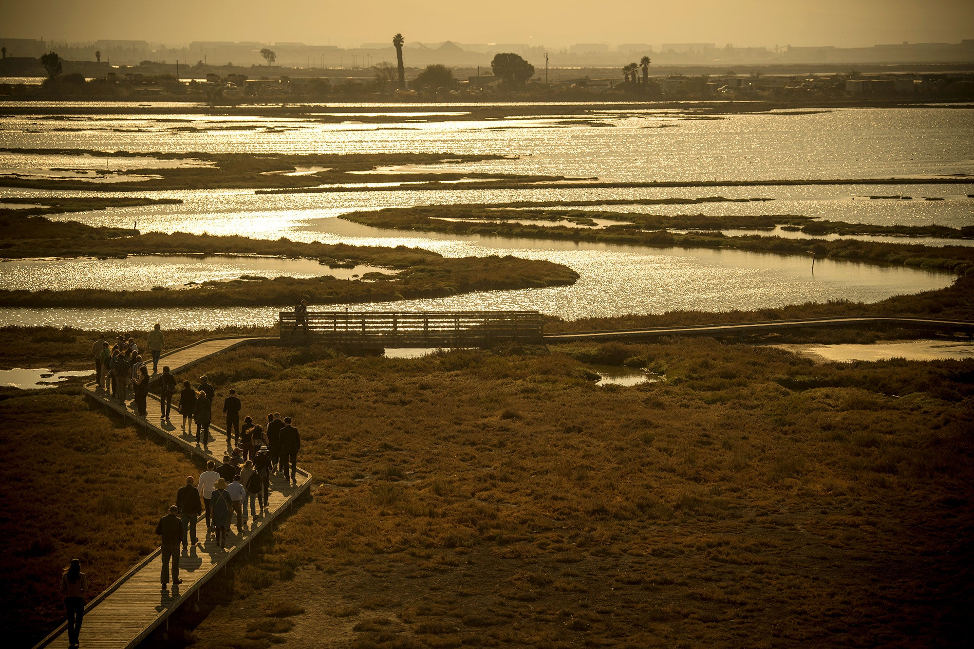 Design teams make their trek on the walkway of the Don Edwards Wildlife Refuge as the sun sets