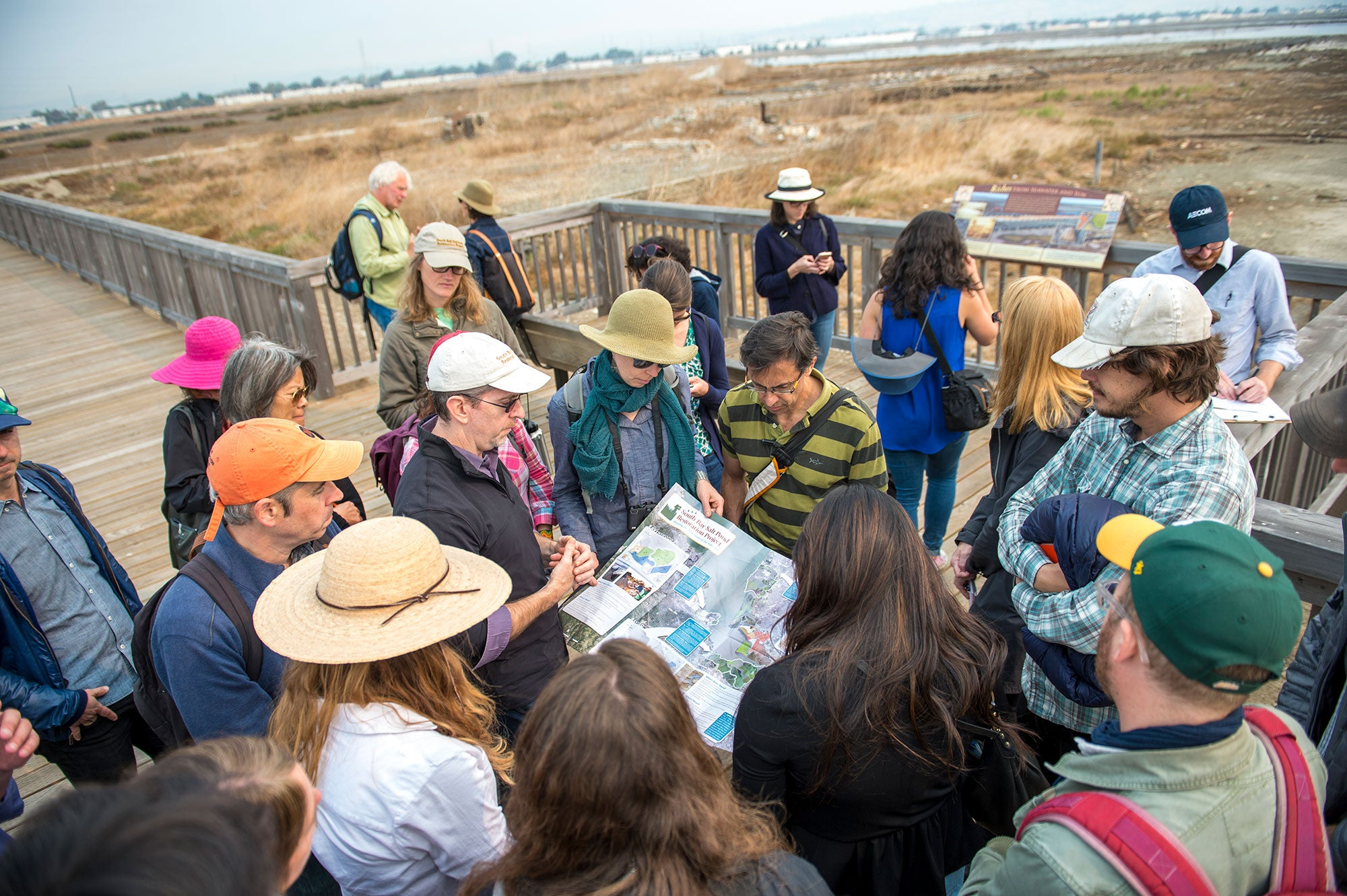 Design team members peruse a large brochure of the South Bay Salt Ponds